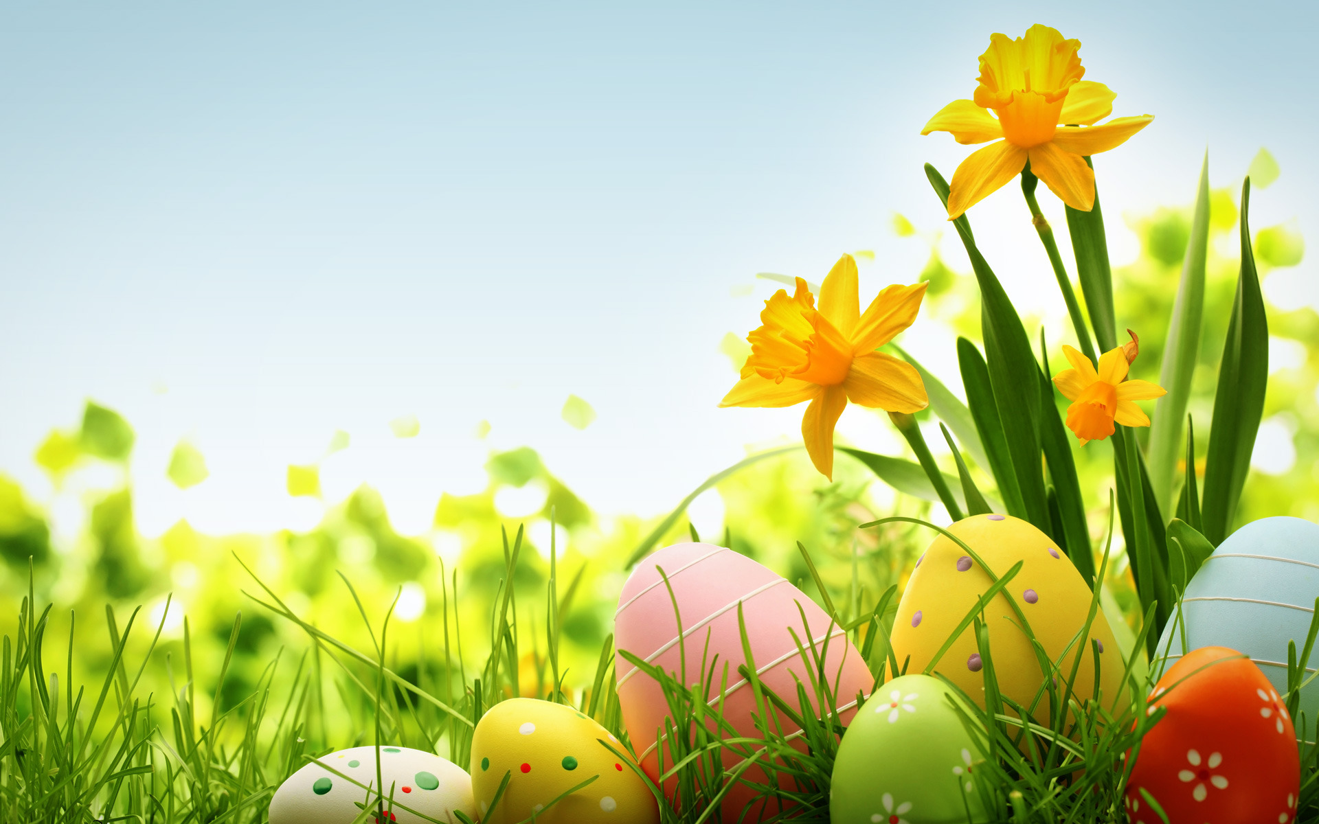 colorful-easter-eggs-holiday-hd-wallpaper-1920x1200-10811_DNcIFEF