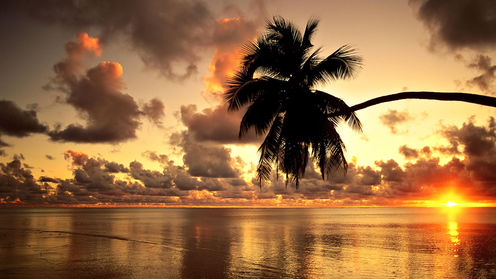 Hawaii-Sunset-Beach-desktop-background-new-hd-wallpaper-