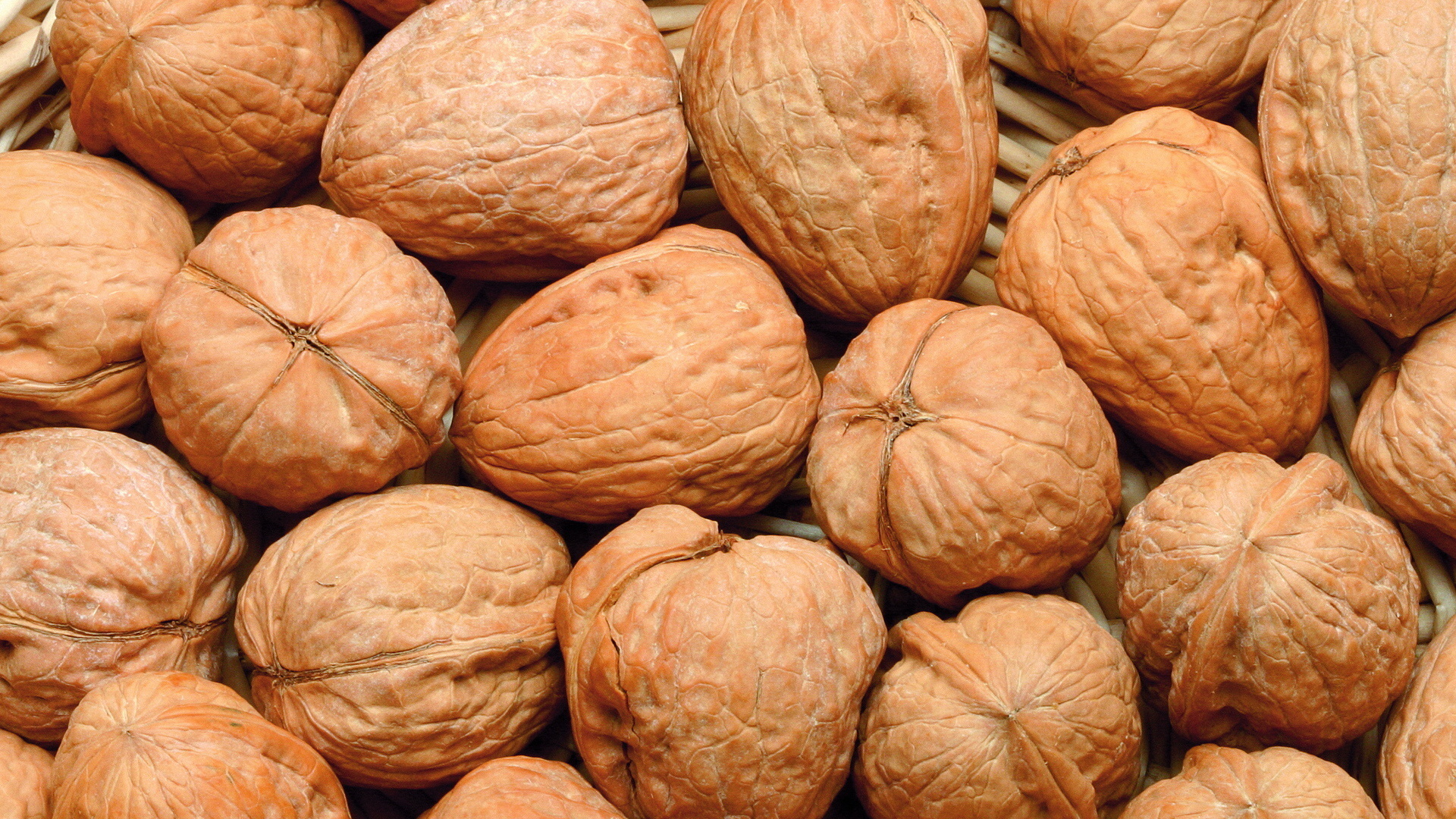 Walnut Wallpaper