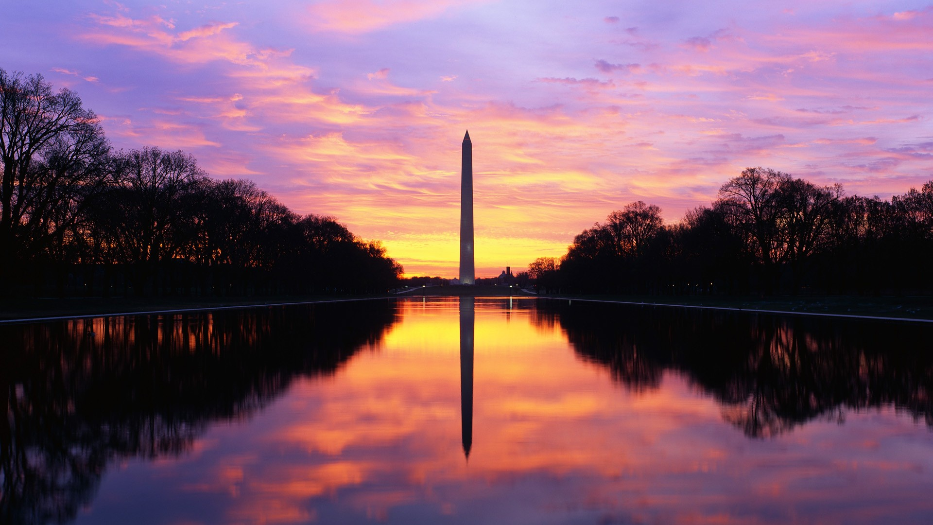 Stunning Washington Wallpaper