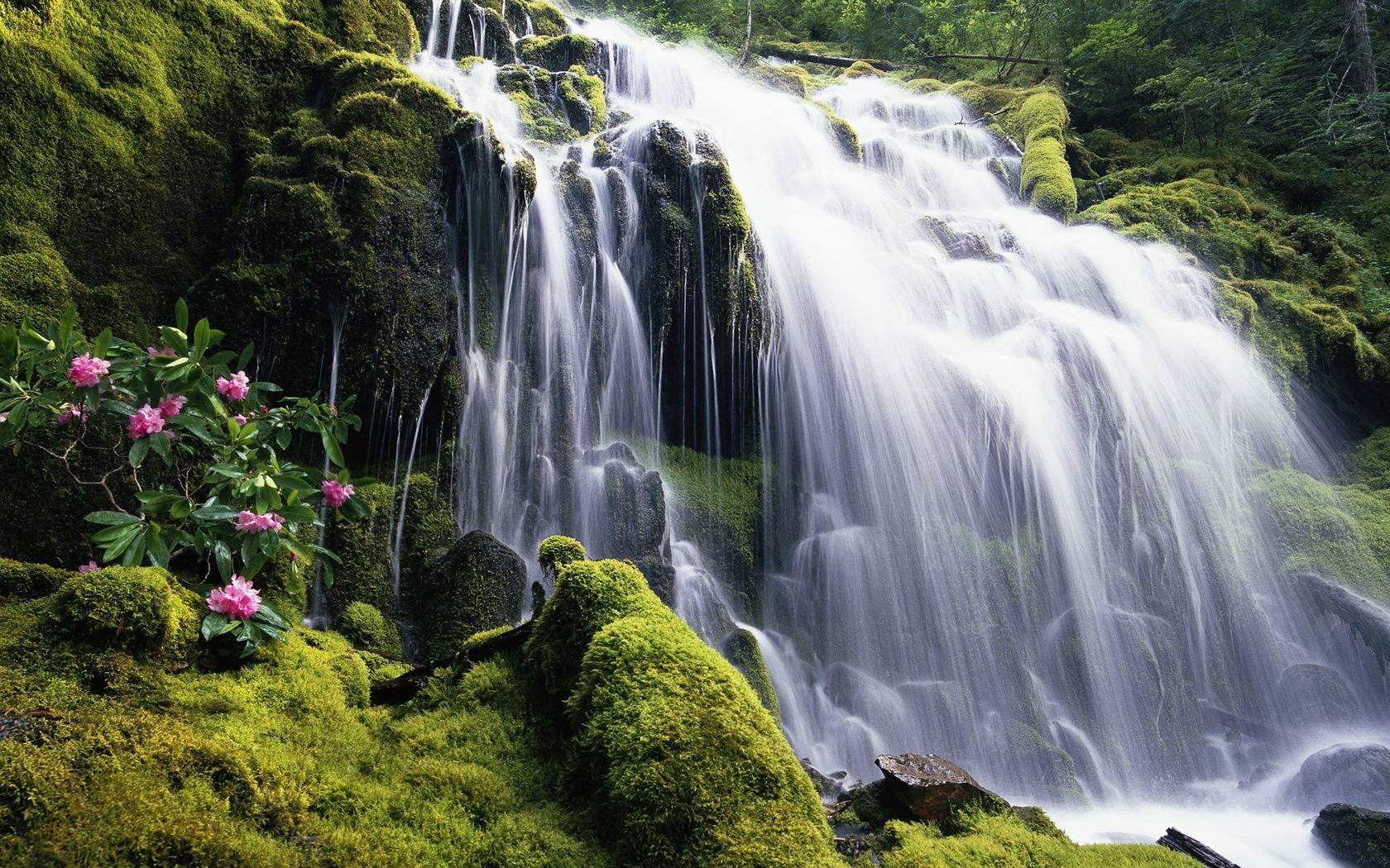 Waterfall Desktop 50