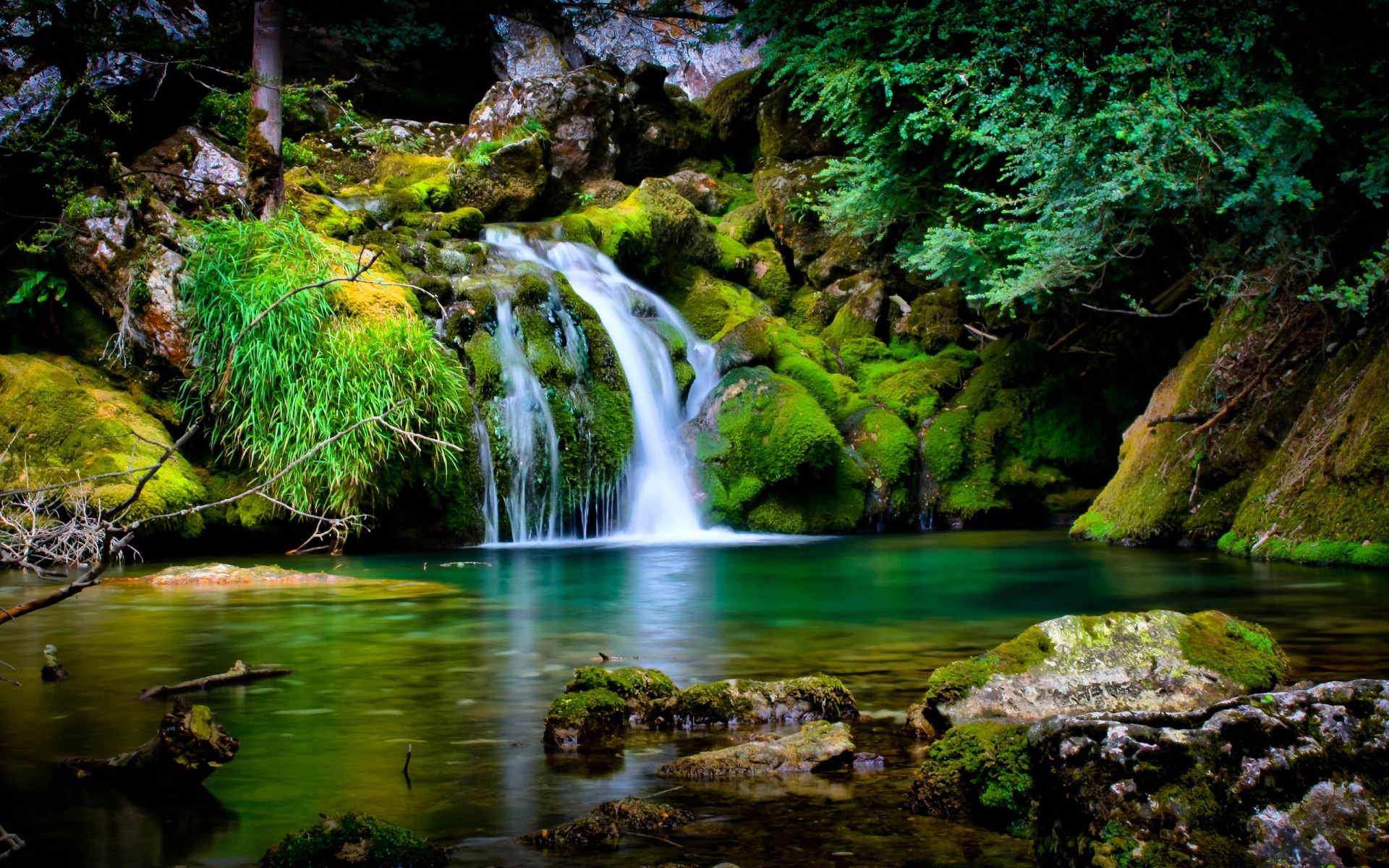Forest Waterfall Wallpaper 23712