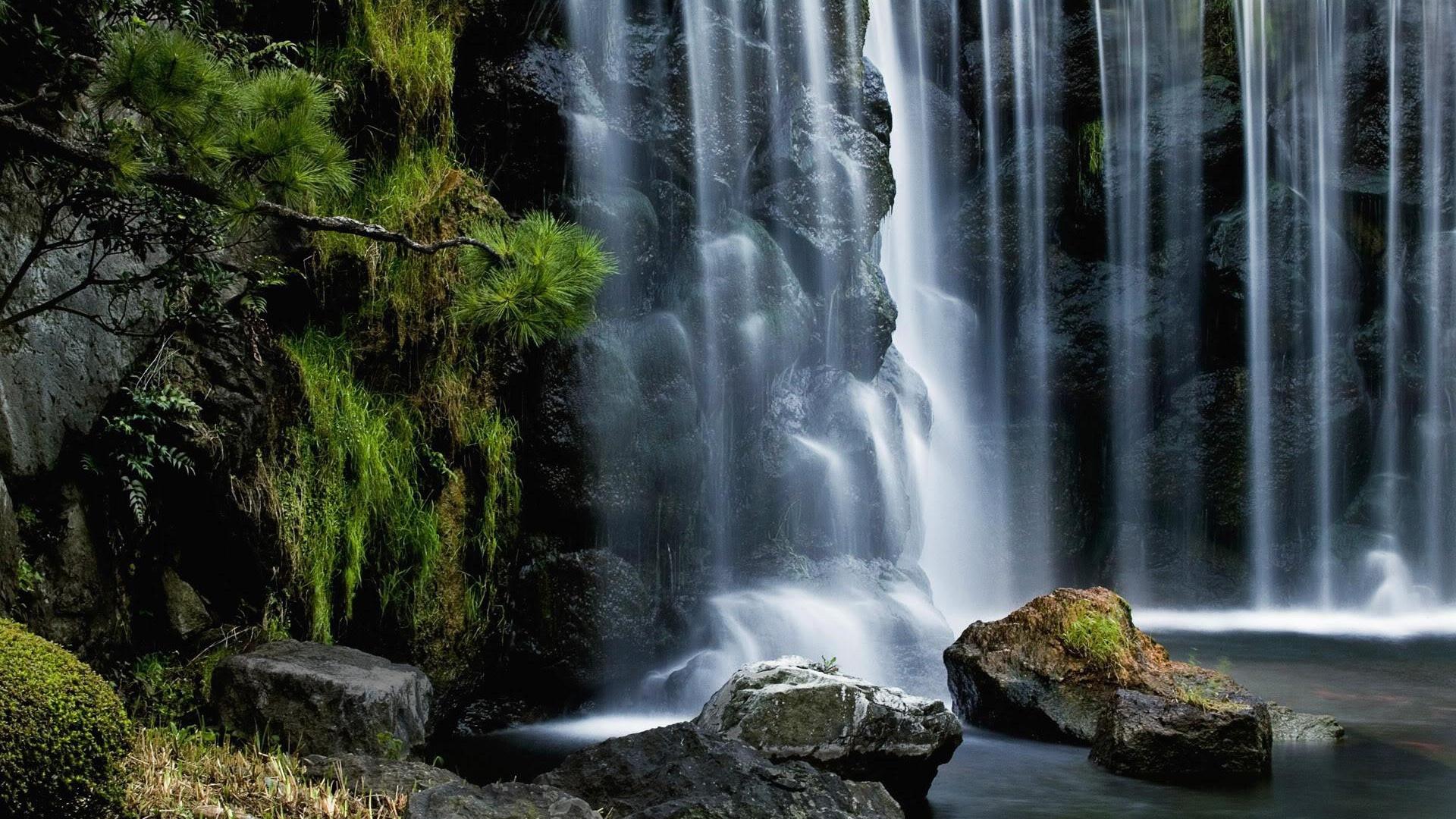 Waterfall Hd Wallpaper 1920x1080 81004