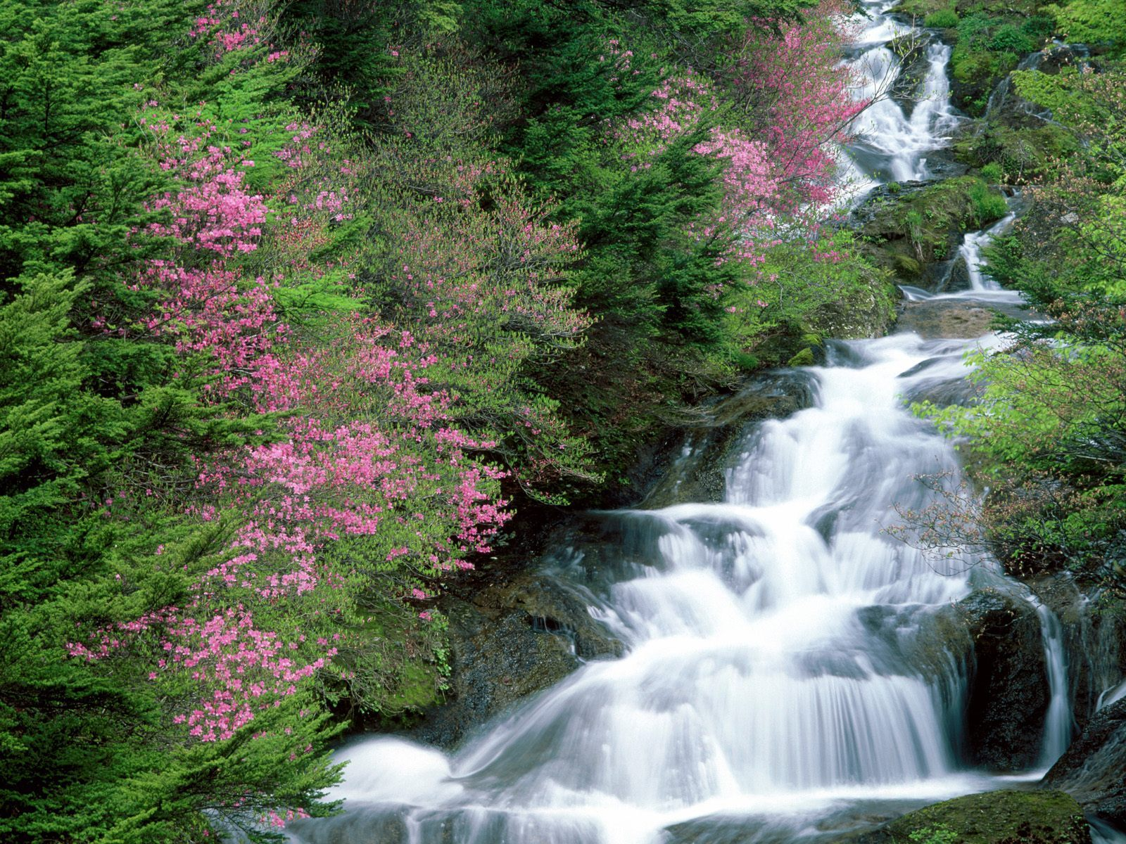 Mountains & Waterfalls Mountains & Waterfalls