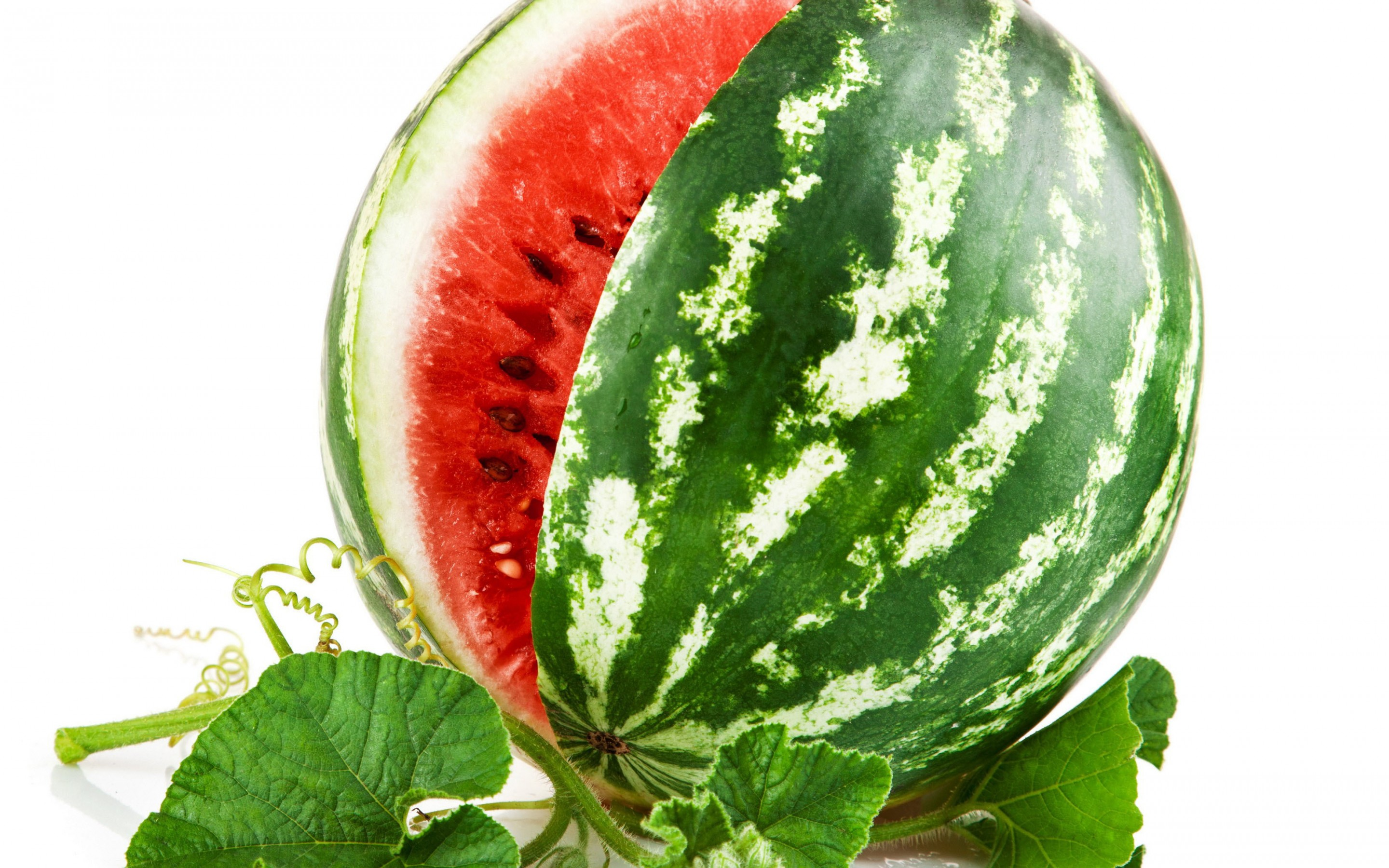 Watermelon; Watermelon; Watermelon; Watermelon Wallpapers; Watermelon Wallpapers; Watermelon Wallpapers