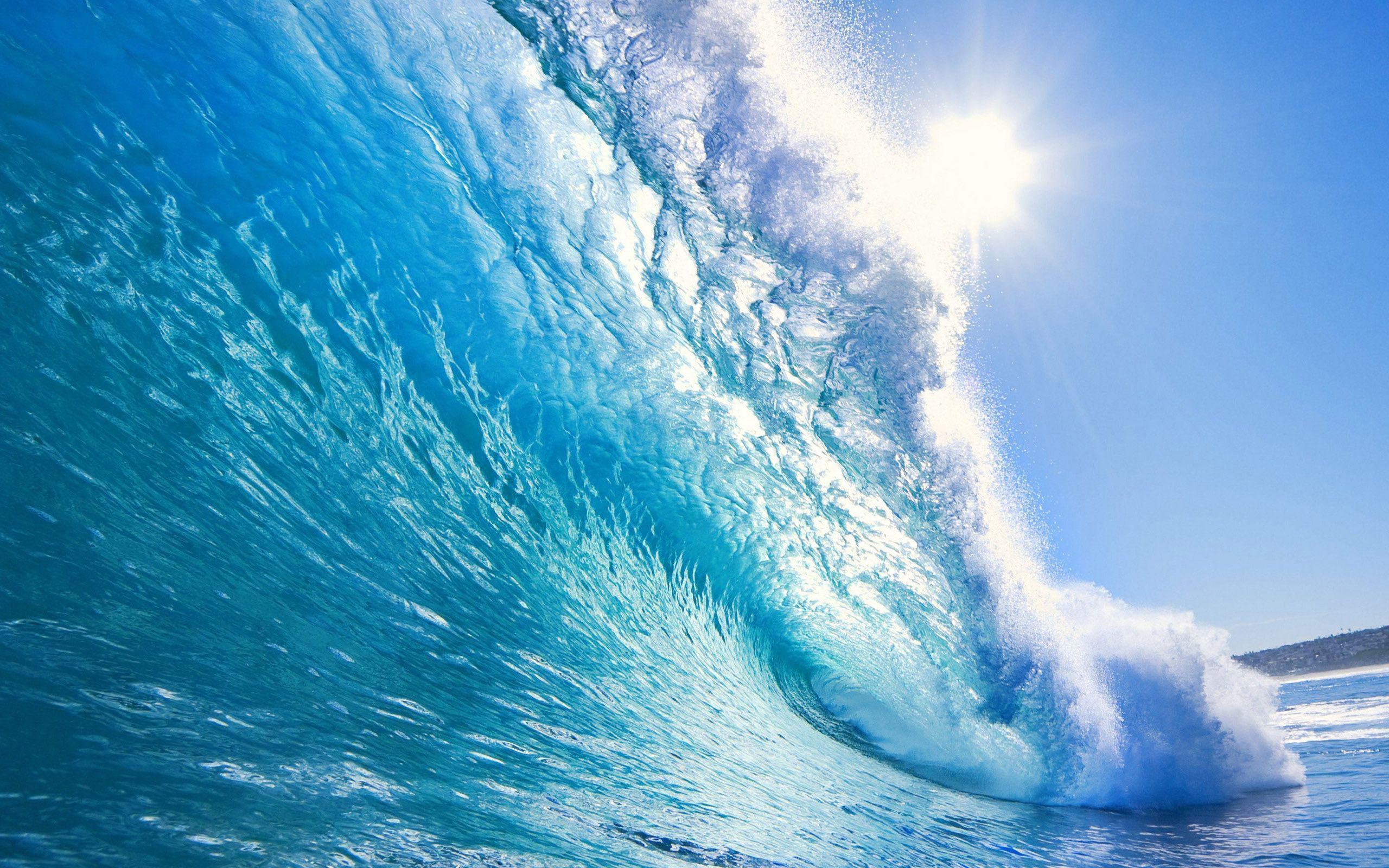 Elegant Wave wallpaper