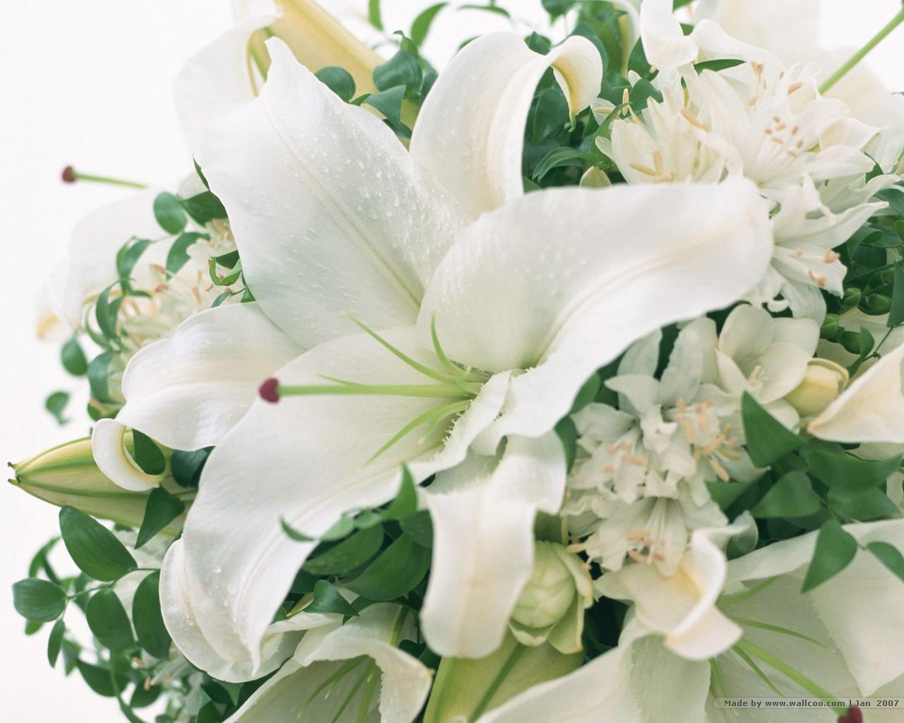 Wedding Flowers 29 Thumb
