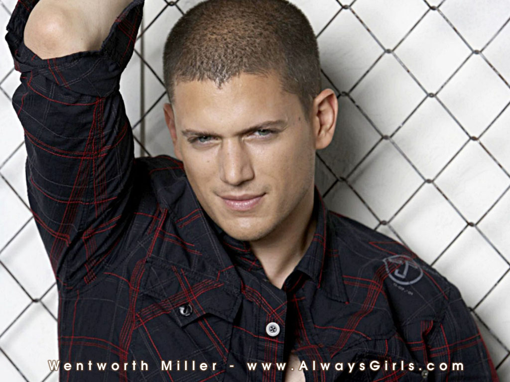 ... wentworth-miller-hd-wallpapers ...