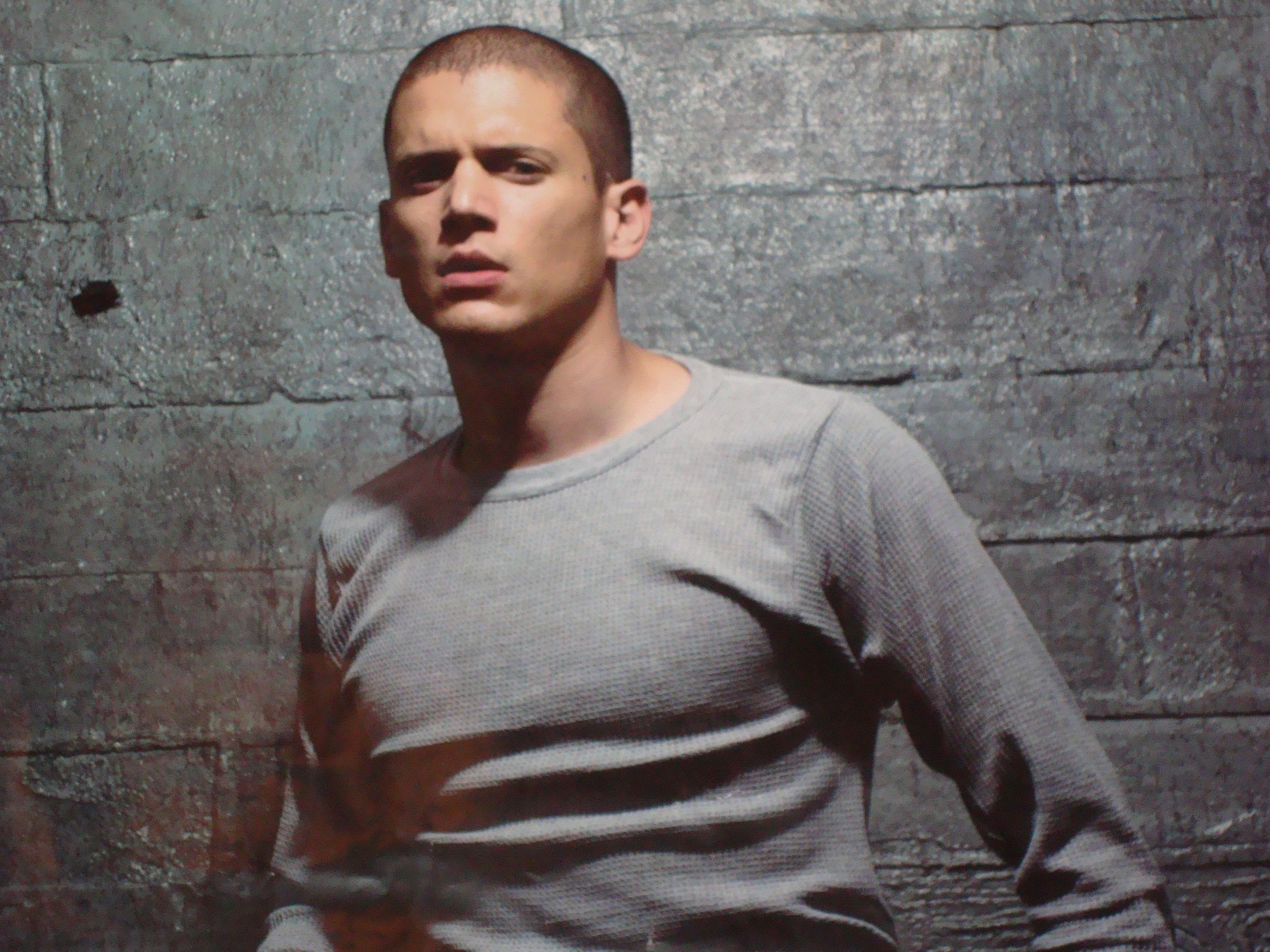 Fanpop Girls Wentworth Miller