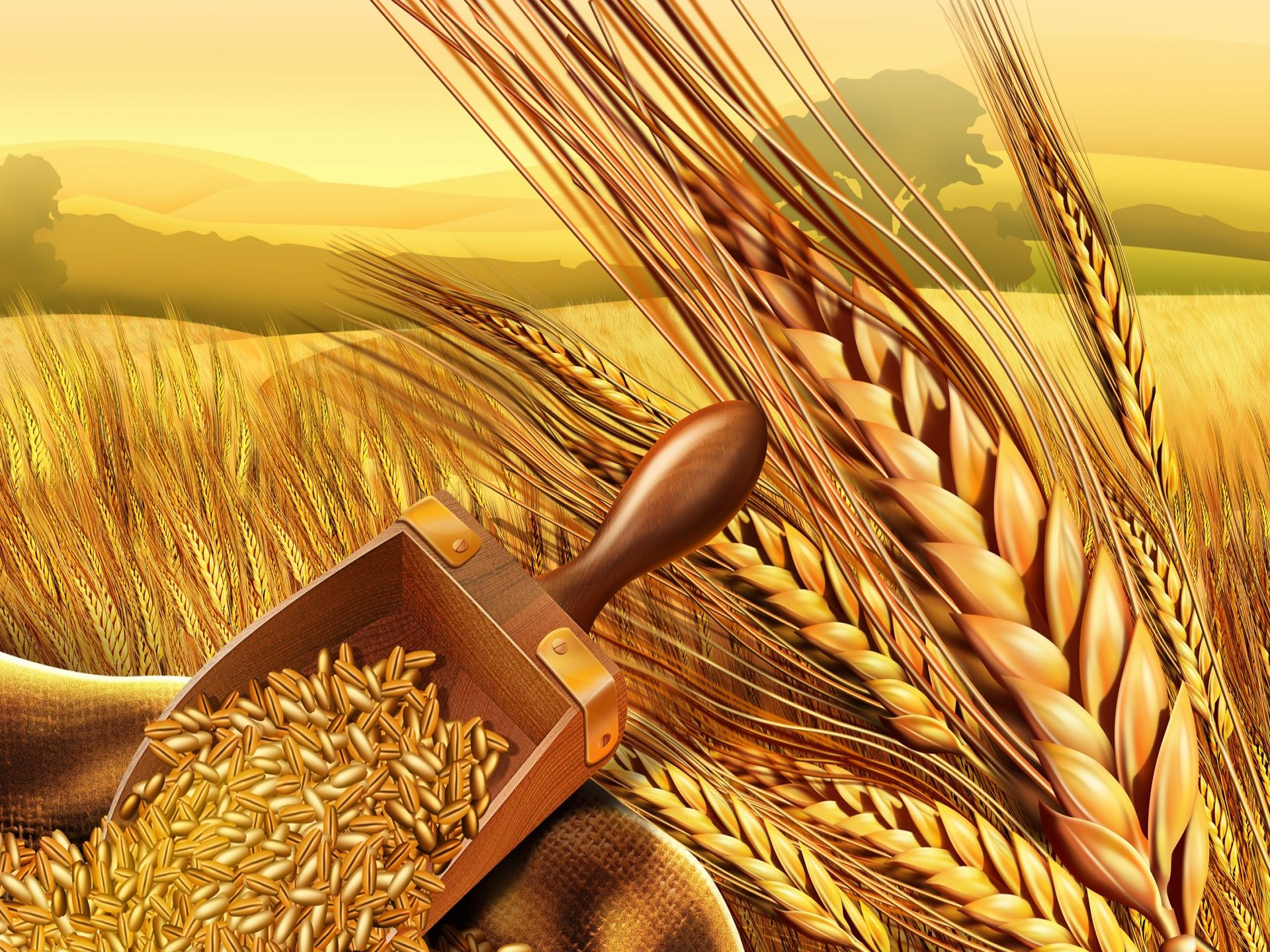 Punjab refuses to give surplus wheat to PTI-led KP