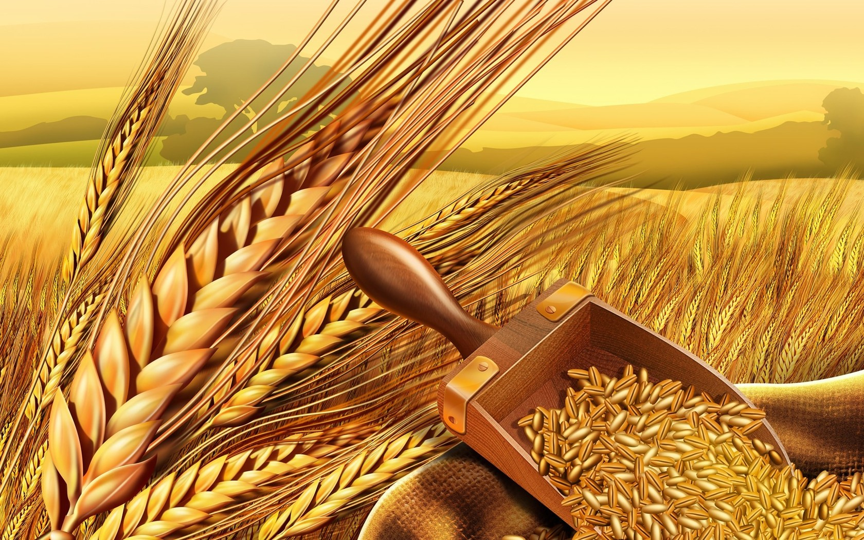Wheat 1920x1200 wallpaper Wheat 1920x1080 wallpaper Wheat 1680x1050 wallpaper ...