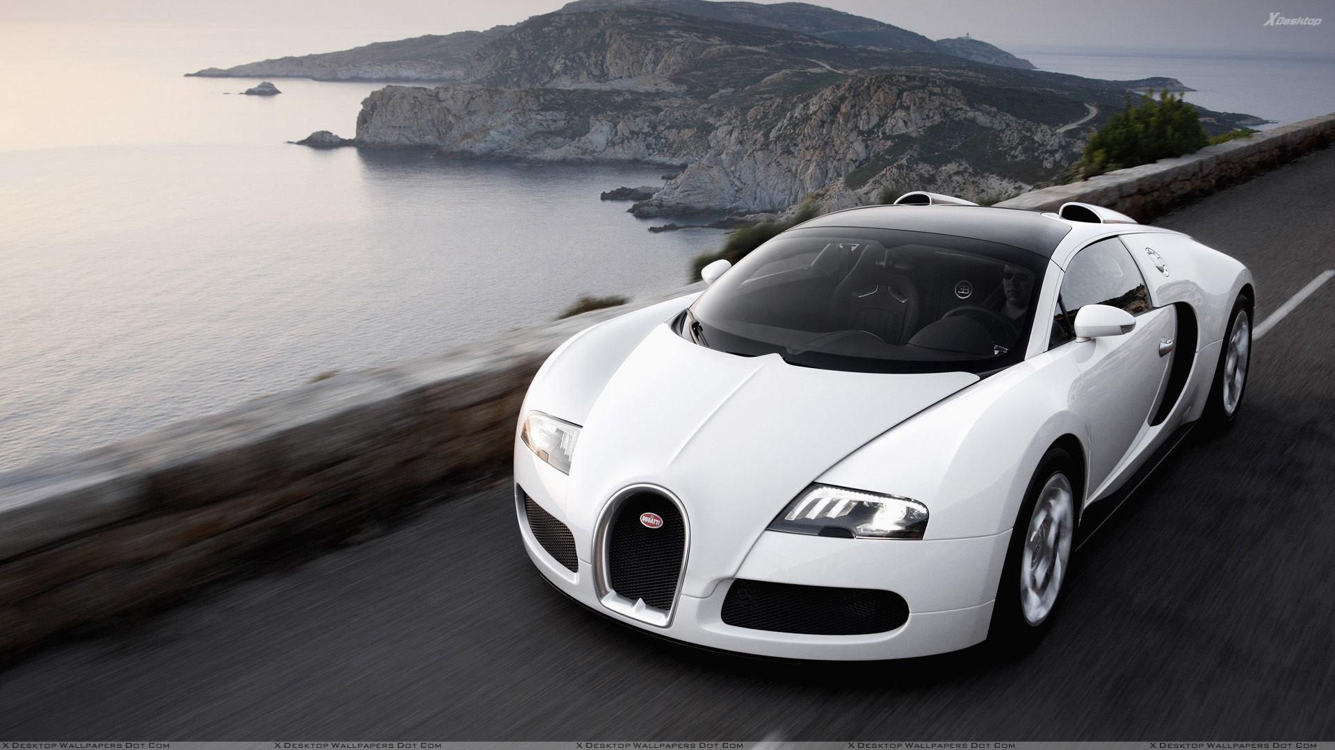 white bugatti veyron wallpaper 1920x1080 18112. Black Bedroom Furniture Sets. Home Design Ideas