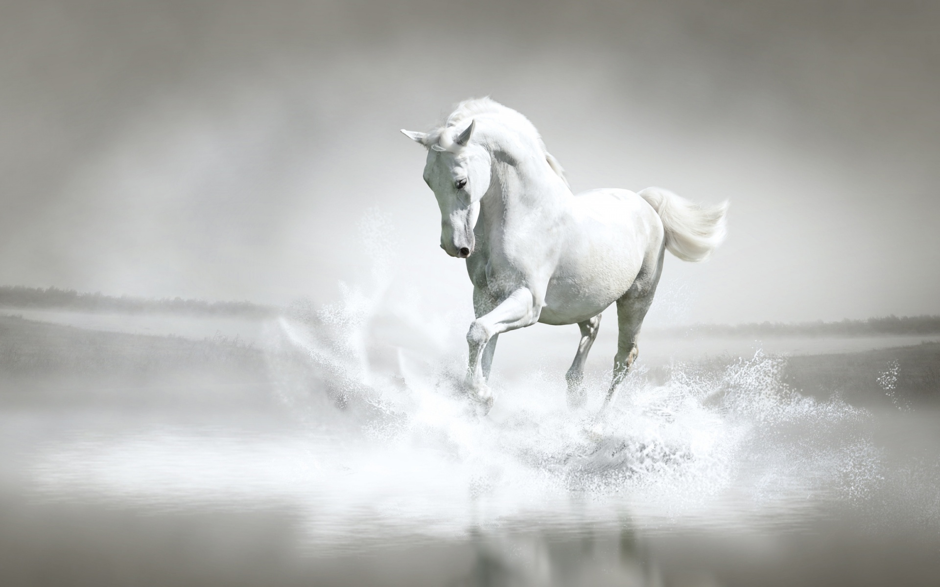 White Horse Water