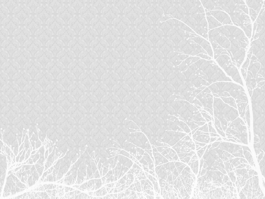 white wallpaper 12 Cool Wallpaper