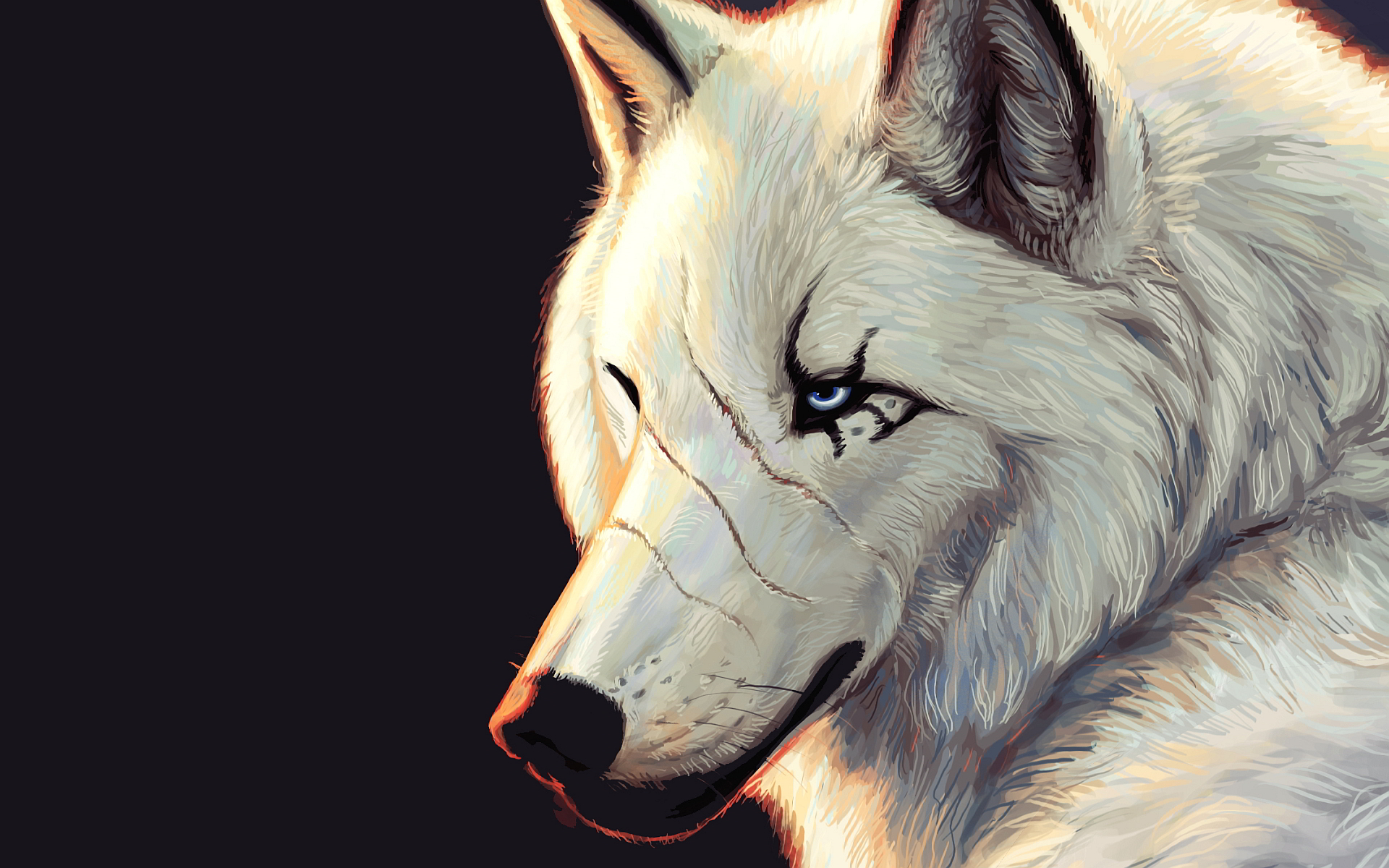Top Wallpaper Mac Wolf - white-wolf-art-1  Photograph_593593.jpg