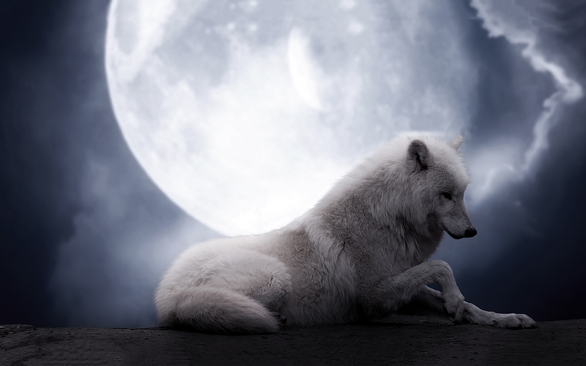 White wolf full moon