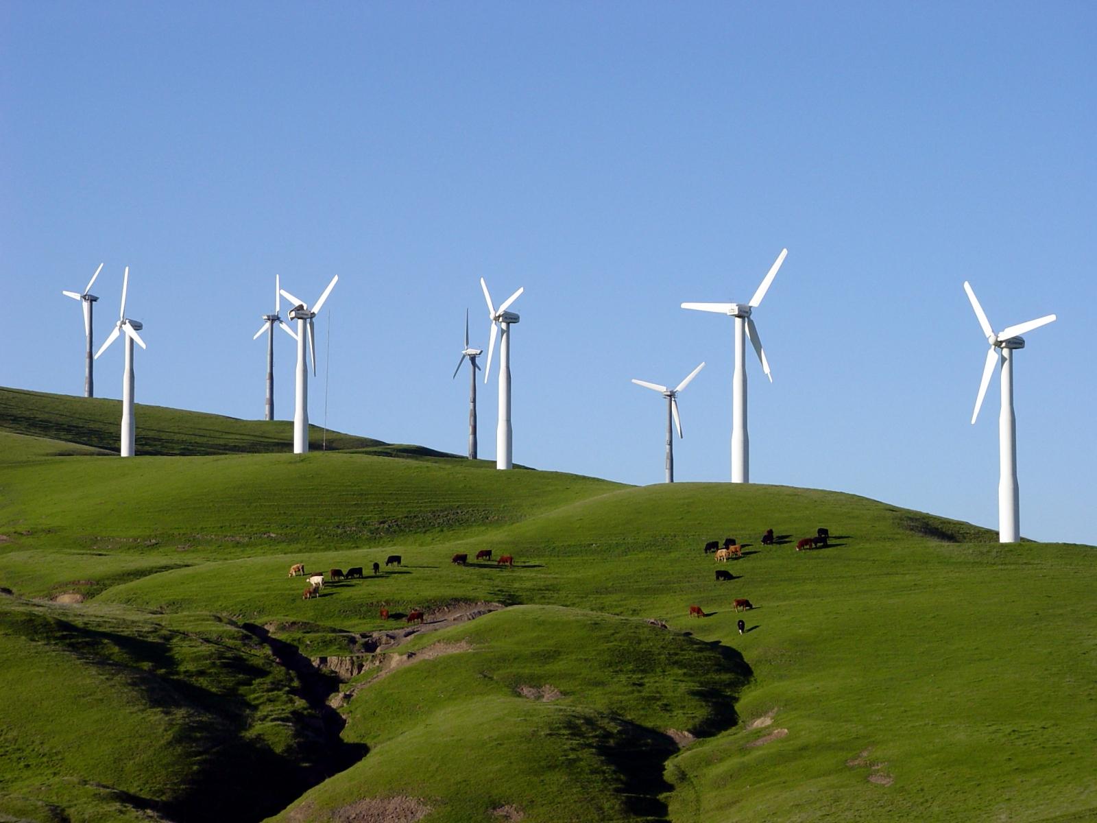 Full size is 1600 × 1200 pixels|. Windmills on hillside. «