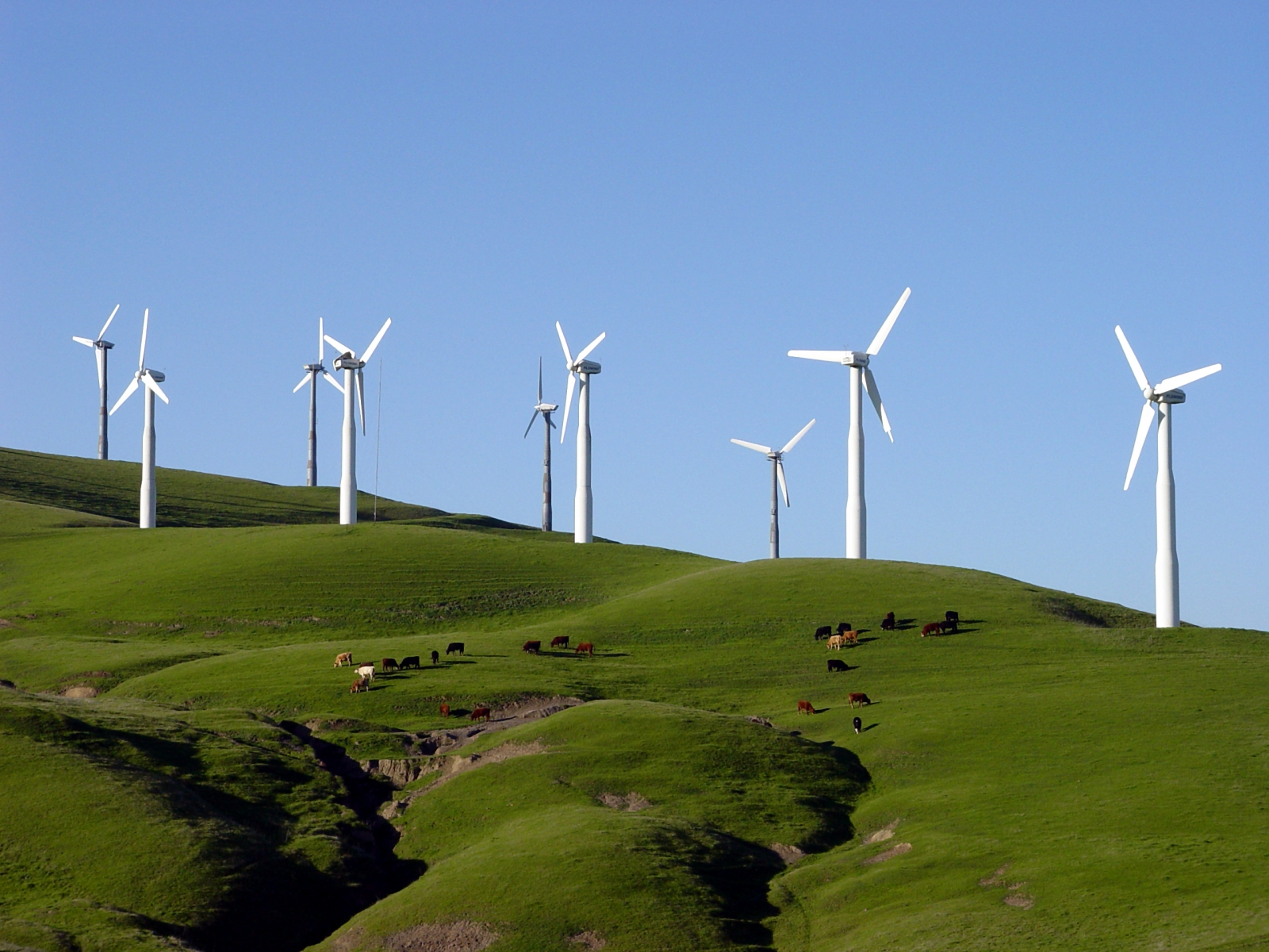 Full size is 1600 × 1200 pixels|. Windmills on hillside. «