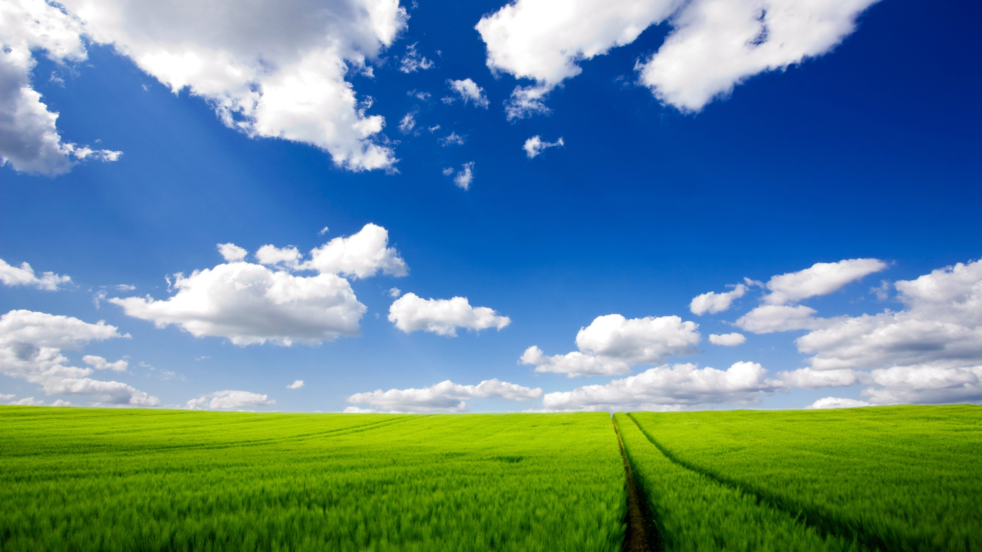 Windows XP Wallpapers 4