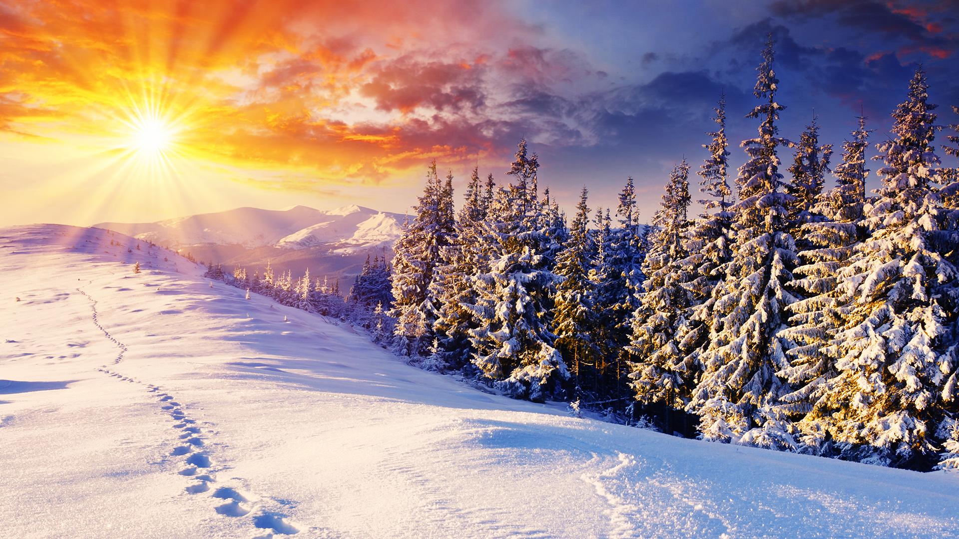Stunning Winter Background