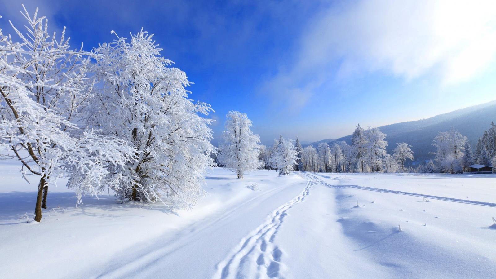 Free Winter Nature Wallpaper, Free Winter Pc Wallpaper