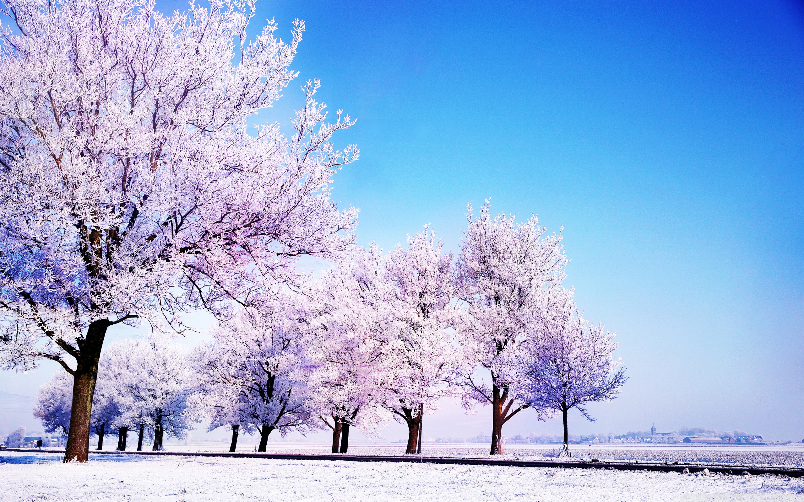 Winter Background HD Wide Wallpaper for Widescreen