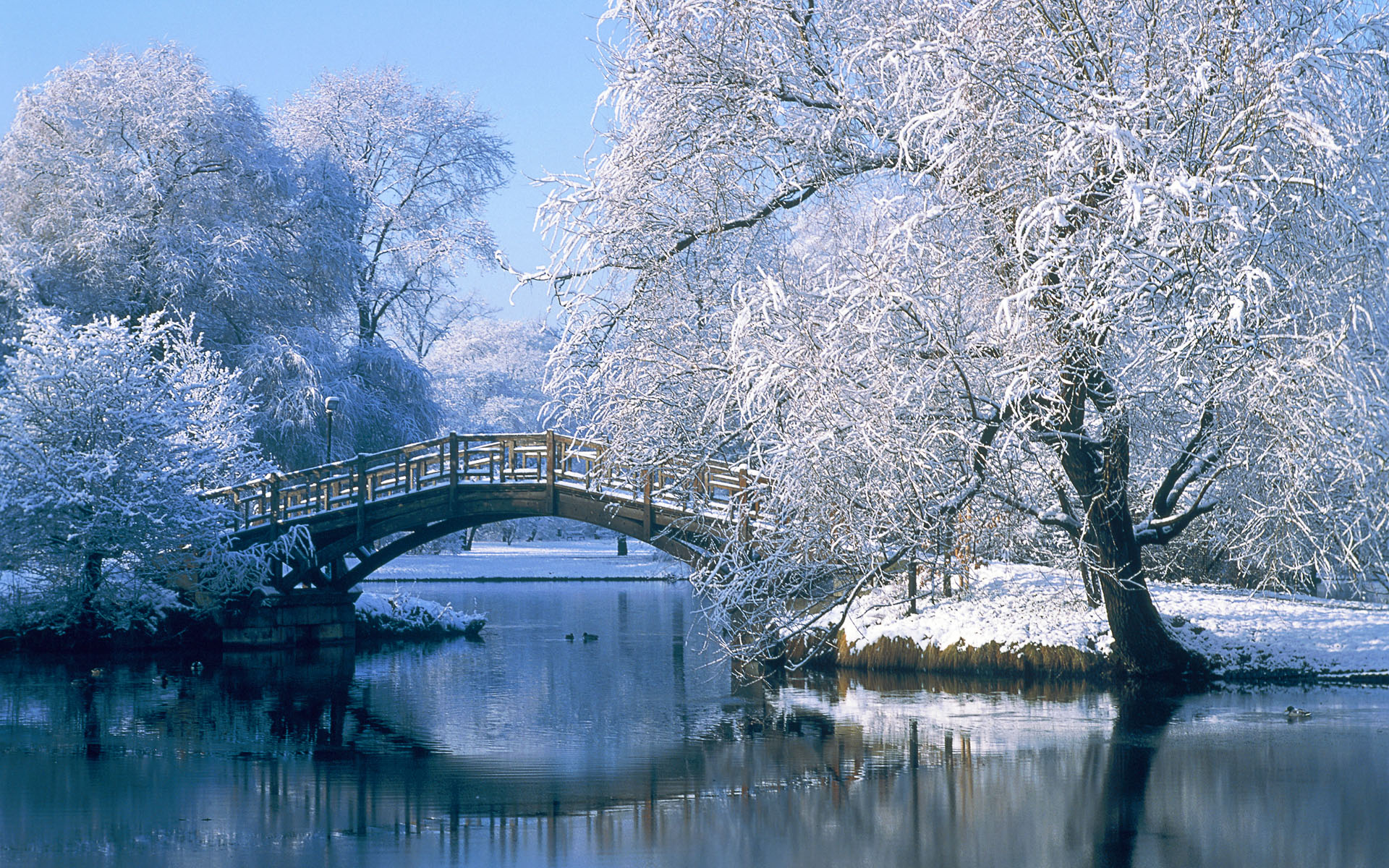 Photography - Winter Landscape Pond Water Bridge Tree Reflection Snow Wallpaper