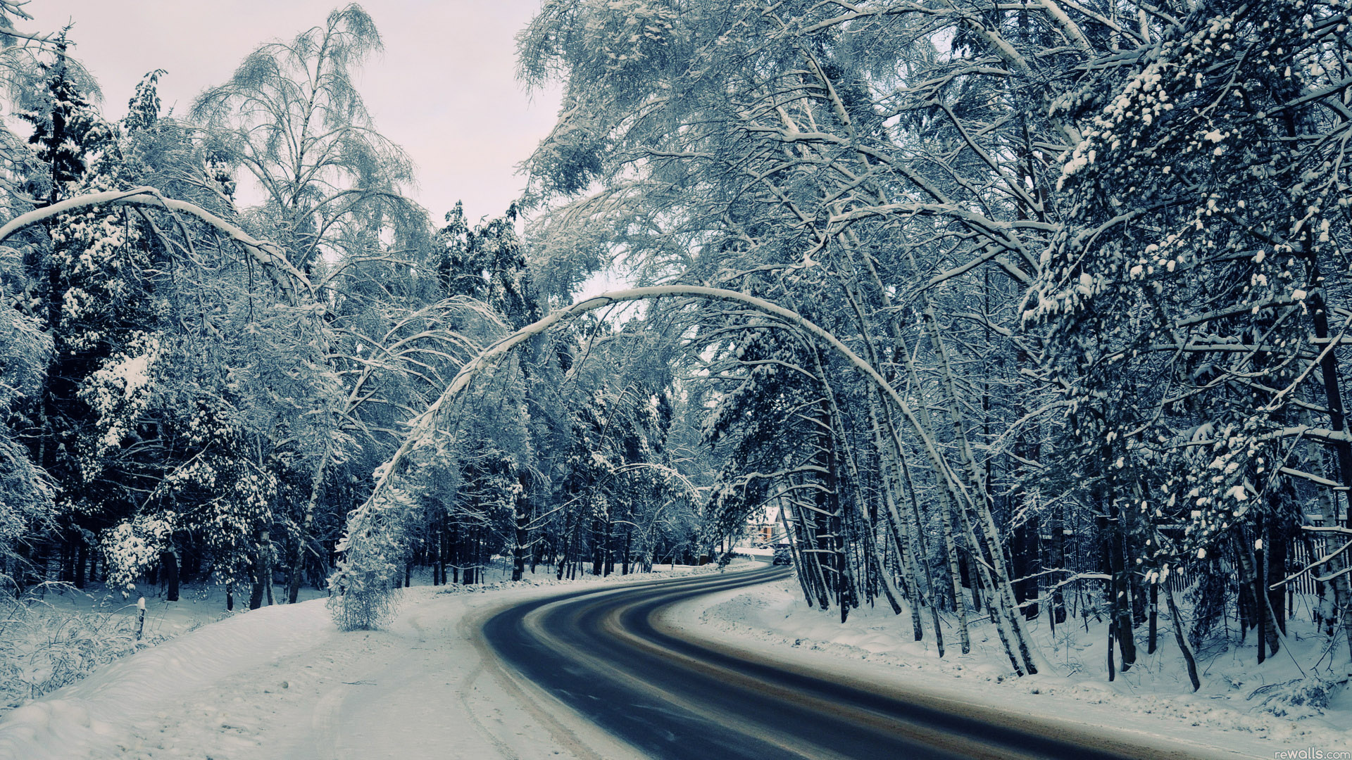 Winter Road Wallpapers