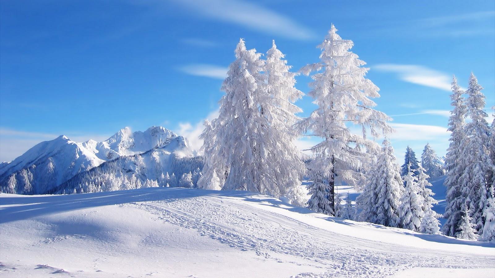 Winter Scenery HD Wallpapers-2