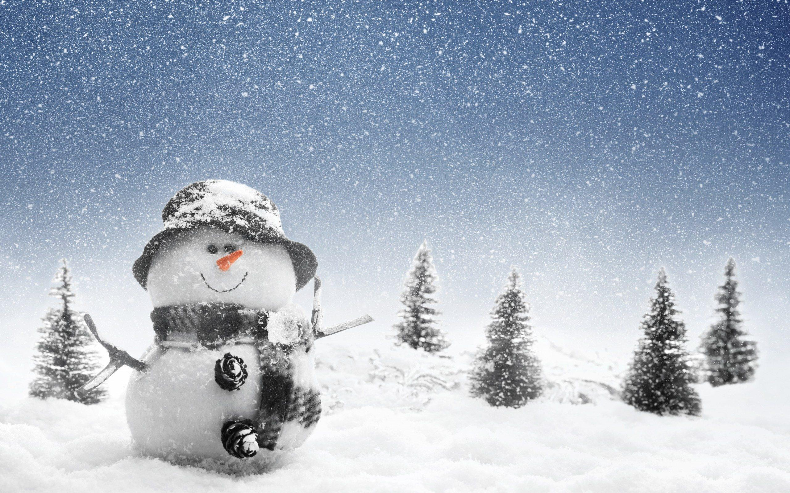 Snowman looking for winter HQ WALLPAPER - (#161288)