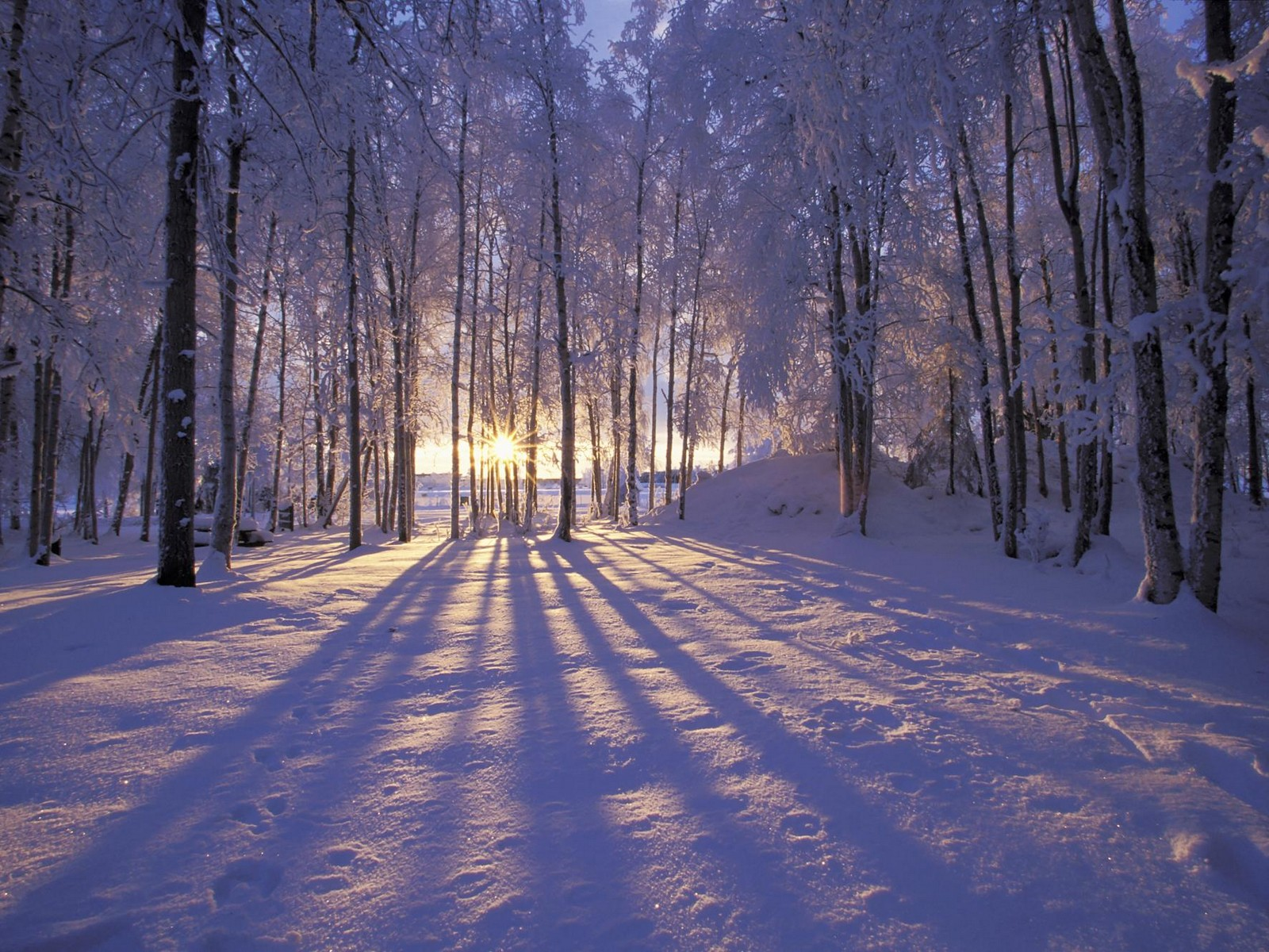 Winter sunset scenery