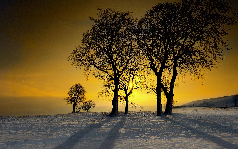 Winter sunshine glow
