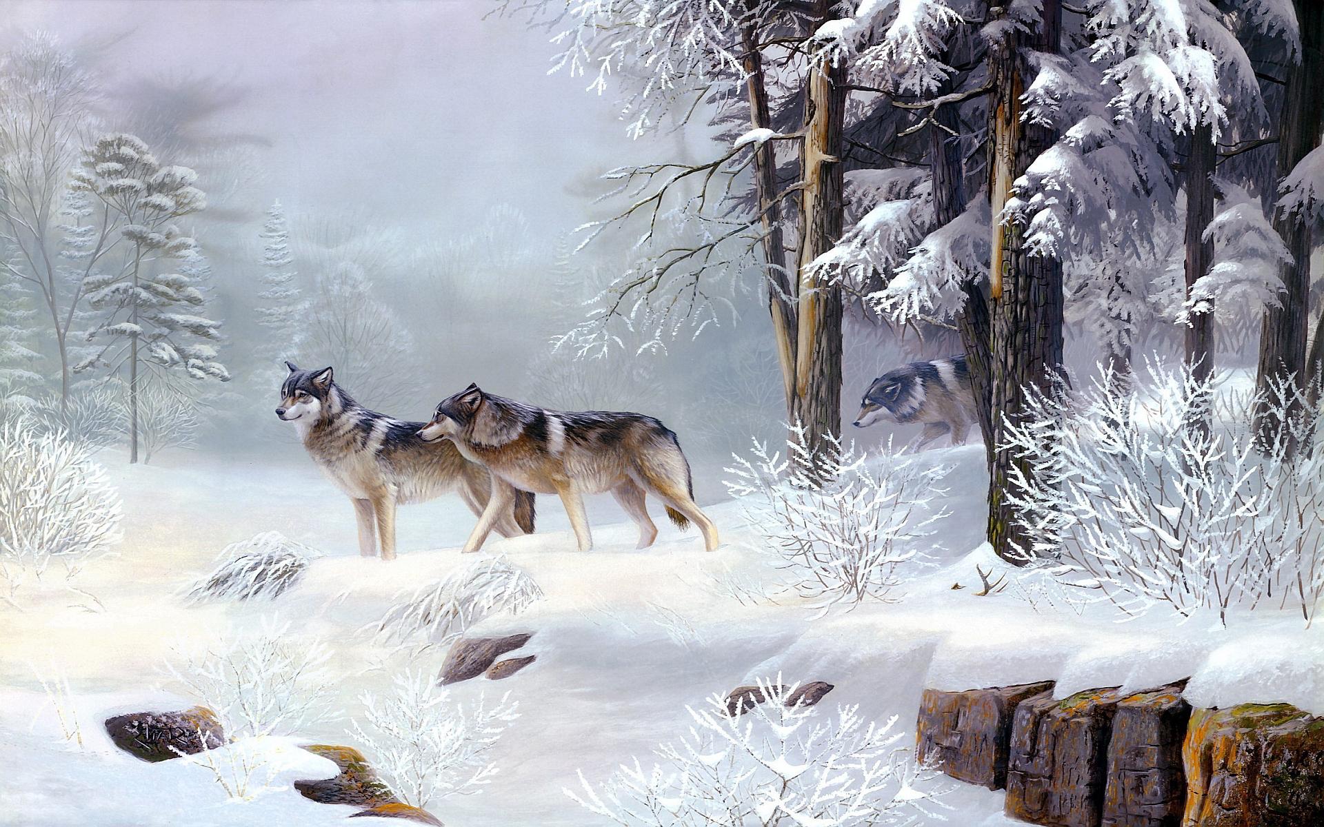 Winter wolves art