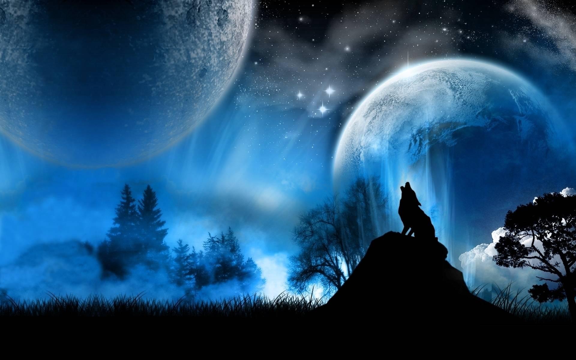 Wolf wallpaper.