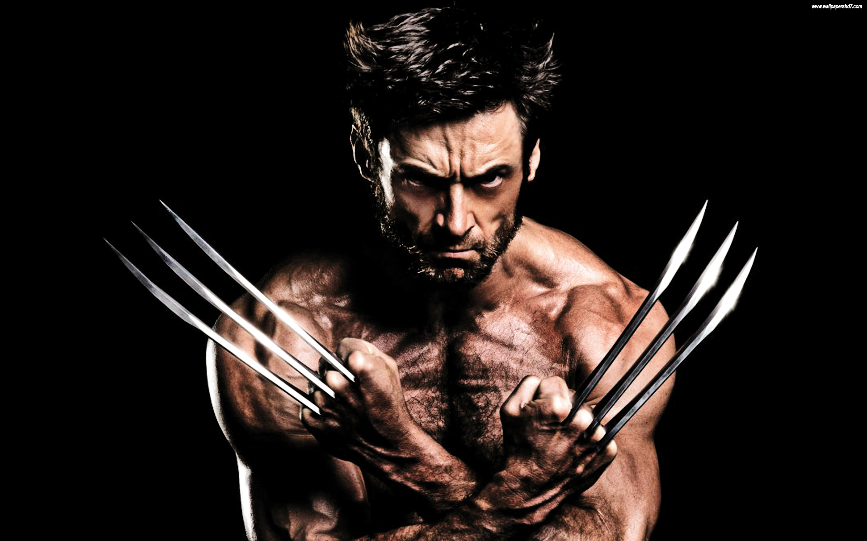 Wolverine Wallpaper 466 Cool Free