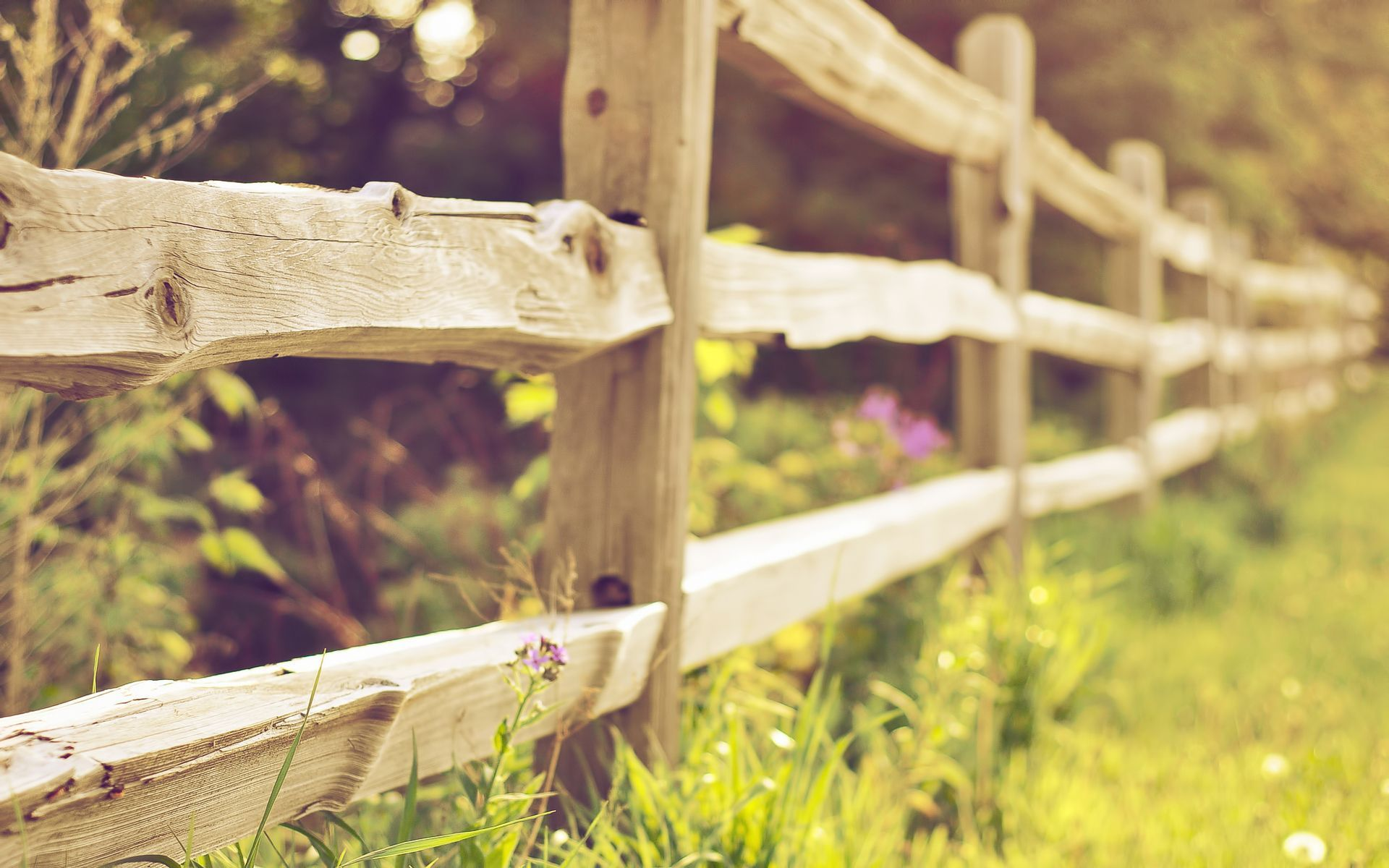 Wood Fence HD
