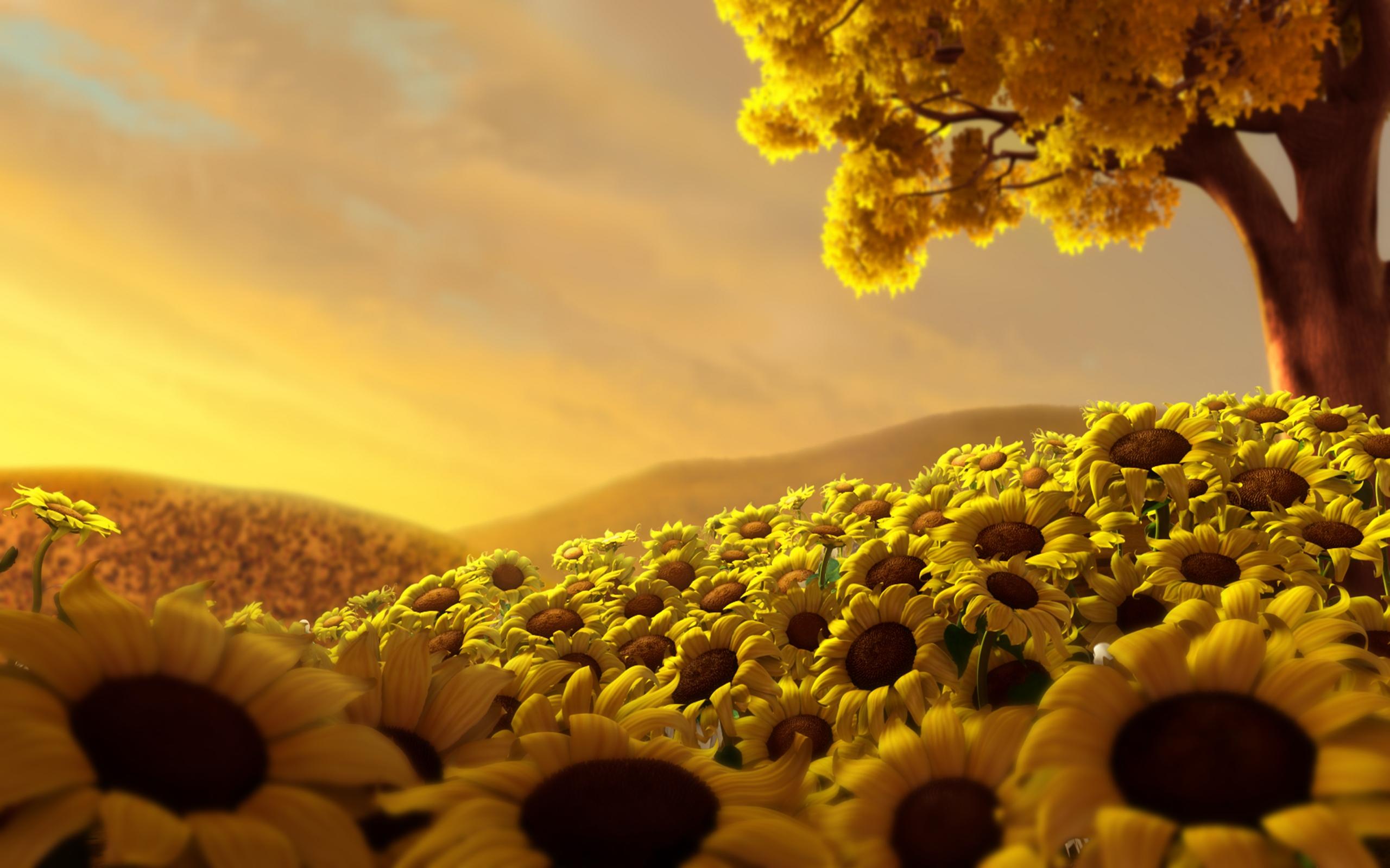 World of Sunflowers