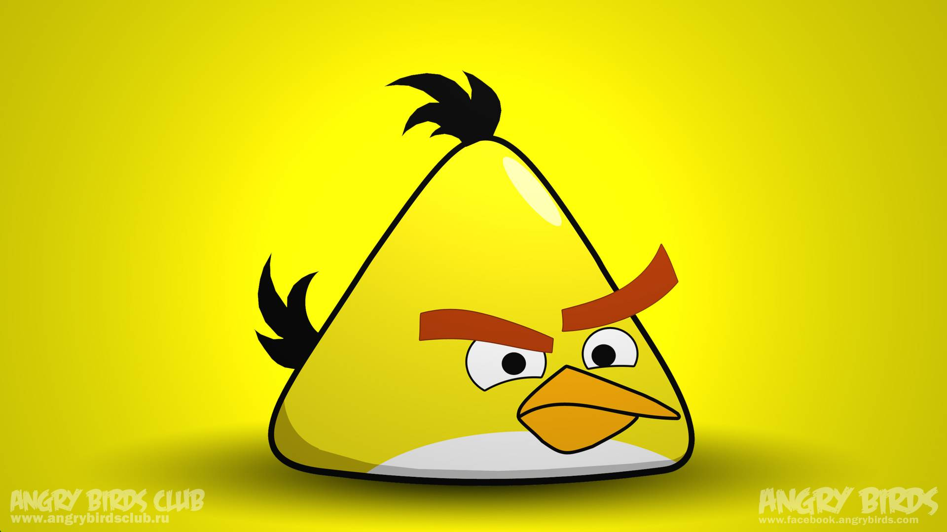 yellow angry bird wallpaper | 1920x1080 | #25925