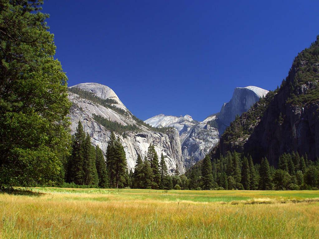 A view of Yosemite