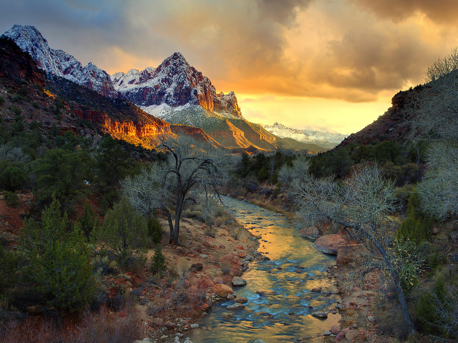 Zion National Park Pictures Wallpaper 1600x1200 8479