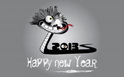 2013 Funny Happy New Year