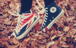 Adorable Converse Wallpaper