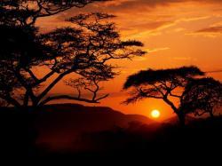 Africa Wallpaper