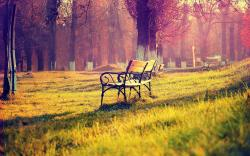 Beautiful Bench Wallpaper