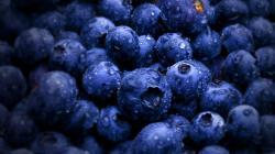 Amazing Blueberry Wallpaper