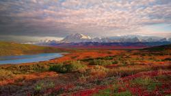 Denali National Park HD