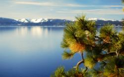 50 Amazing Lake Tahoe Pictures In Nevada