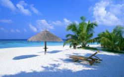 Amazing Paradise Wallpaper 12836
