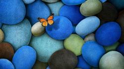 Amazing Hd Sea Pebble Wallpapers Jodepot 2560x1440px