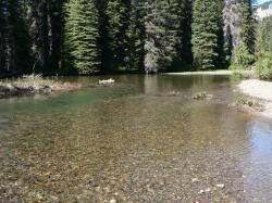 File:American River 16792.JPG